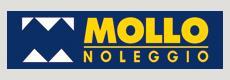 Ritratto di Mollo s.r.l